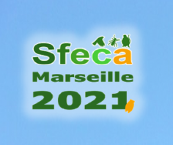 Colloque annuel de la SFECA