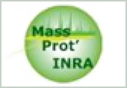 Logo Mass' Prot