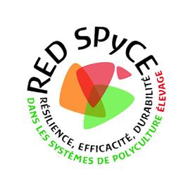 RED-SPYCE-0