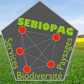 SEPIOPAG-0