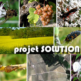 Solution-0