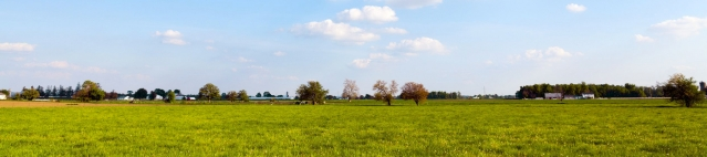 Bienvenue sur le site de l'UMR BAGAP : Biodiversité, agroécologie et aménagement du paysage