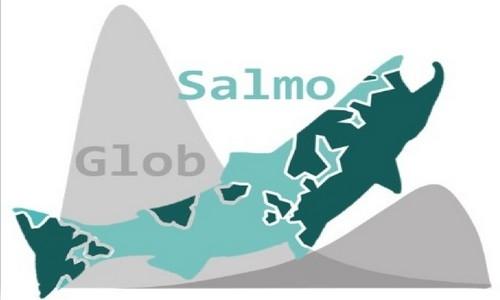Com-Tool-SalmoGlob