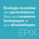 Écologie évolutive des perturbations liées aux invasions biologiques et aux xénobiotiques
