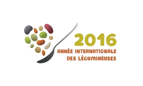 logo 2016 légumineuses