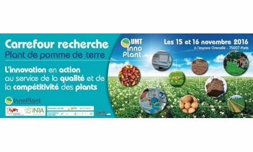 2e édition du Carrefour Recherche - Plant de pomme de terre