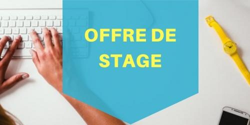 Stage de Master 2