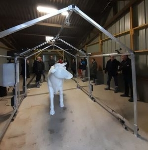 2020.03.02 - 3D device to record cow morphometry
