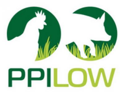 2020.03.02 - Projet PPILOW