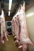 carcasses_porc