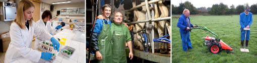 Membres des installations expérimentales de production laitière