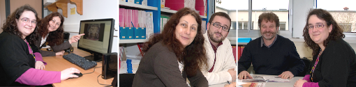 Members of the Swine Systems team