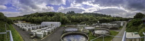 Welcome to the Inra Experimental Fish Farm of the Monts d'Arrée unit