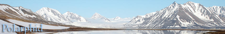Polarphid, Polar, Aphid, Arctic, Subantarctic, Svalbard, Kerguelen, Crozet, Amsterdam, Saint-Paul