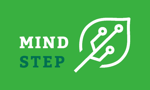 2019_projects_MindStep_kickoff