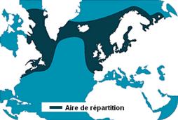 Repartition area