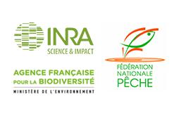 Logos CNICS