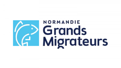 Logo Normandie Grands Migrateurs